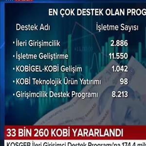 KOBİ'lere İlk 6 Ayda 719.5 Milyon TL Destek
